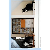 Cat Bookends 2015 Weekly Calendar: 2015 weekly