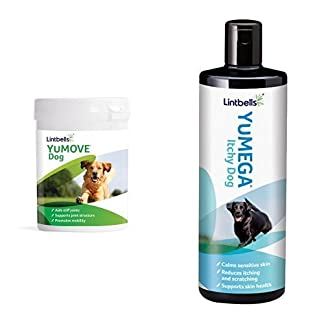 Lintbells Joint and Itchy Dog Supplement Set (300 tablets and 500ml) 41elaeXRA8L