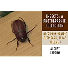 Insects: A Photographic Collection: Deer Park Prairie: Deer Park, Texas - Volume 1 (Arthropods of Deer Park ) (English Edition)