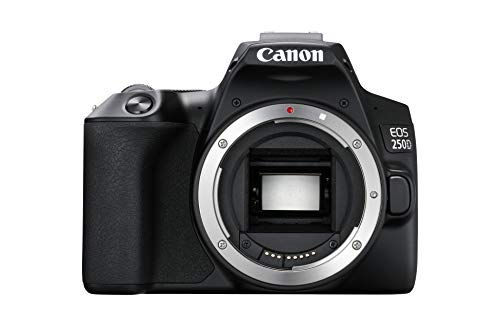 EOS 250D Fotocamera reflex digitale sensore APS C 4K Full HD DIGIC 8 WLAN Bluetooth) alloggiamento nero