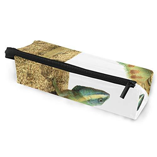 Pencil Bag Case Sonnenbrillen Asian Green Chameleon Isoliert Kosmetische Studenten Schreibwaren Beutel Reißverschluss für Mädchen Jungen