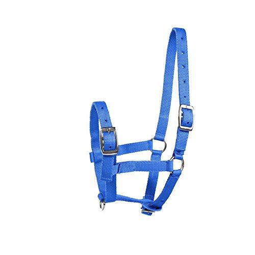 netproshop Pferde Fohlen-Halfter Dreifach Verstellbar Auswahl, Farbe:blau