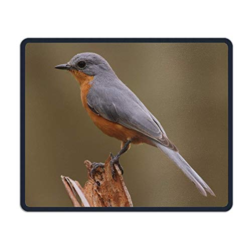 meniony Palette Bird Mouse Pad Funny Awesome Customized, Rectangle -