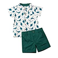 Toddler Little Boy Kids Summer Floral Shirt Blouse Tops + Bermuda Shorts Outfit Set Clothes (Green Dinosaur, 1-2T)
