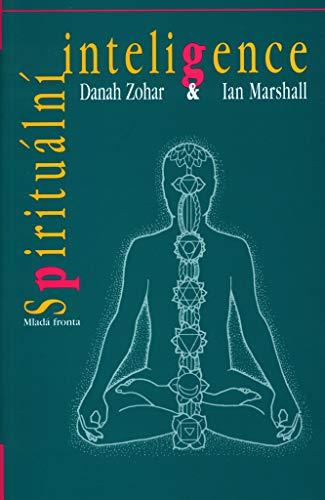 Spirituální inteligence (2003)