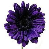 6 x Kunstblume, mit Stiel, Gerbera Big Bloom-besonders dramatischen, für Haus und Garten