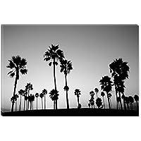 Startonight Cuadro sobre Lienzo en Blanco y Negro Palmeras en la Playa, Impresion en Calidad Fotografica Enmarcado y Listo Para Colgar Diseño Moderno Decoración Formato Grande 80 x 120 CM
