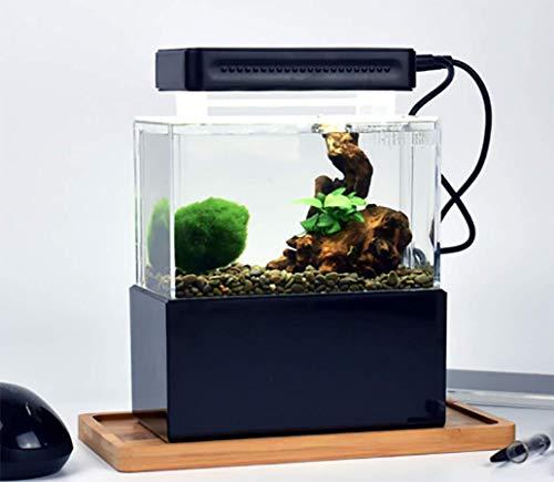 CUNZ Kleines Aquarium, tragbar, Kunststoff, mit LED-Lampe und USB-Filter für Aquascaping