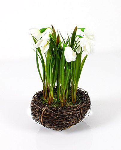 Shopping - Ratgeber 41eoSqqo1xL Frühlingsdeko - Zeigen Sie Freude am Frühling