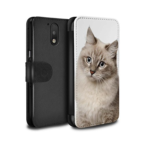 stuff4-pu-leather-wallet-flip-case-cover-for-motorola-moto-g4-2016-siberian-design-cat-breeds-collec