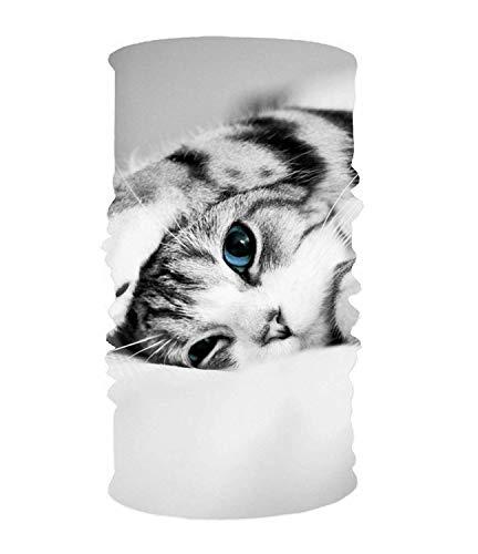 Women's Stirnbänder Elastic Turban Head Wrap Animal Cats Kitten Blue Eyes Cute Hair Band