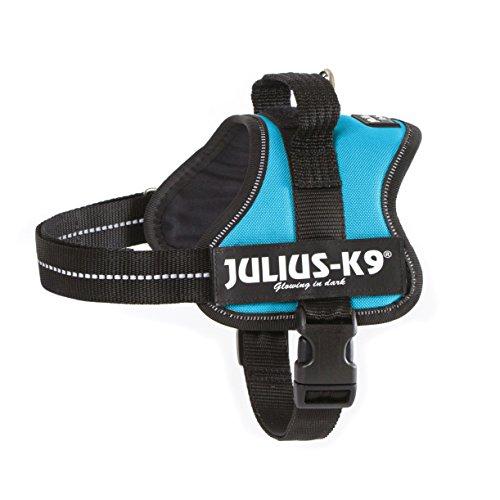 trixie-harnais-pour-chien-power-julius-k9-aigue-marine-mini-m-51-67-cm