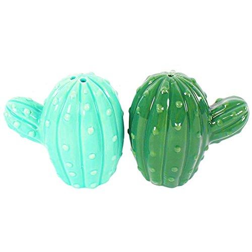 paar-salz-und-pfefferstreuer-boho-bandit-kaktus-kannchen