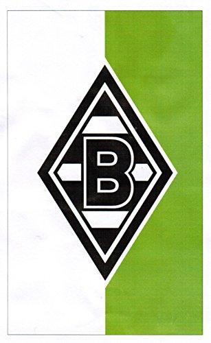 Unbekannt VFL Borussia Mönchengladbach Herren Flagge Fohlenelf-Artikel Hissfahne, Mehrfarbig, 150 x 250 cm, 16330
