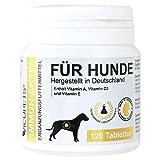 Vicupets Immun Aktiv für Hunde | Unterstützung des Immunsystems | Erhalt der Abwehrkräfte | mit Vitamin D3, Vitamin A und Vitamin E | Made in Germany