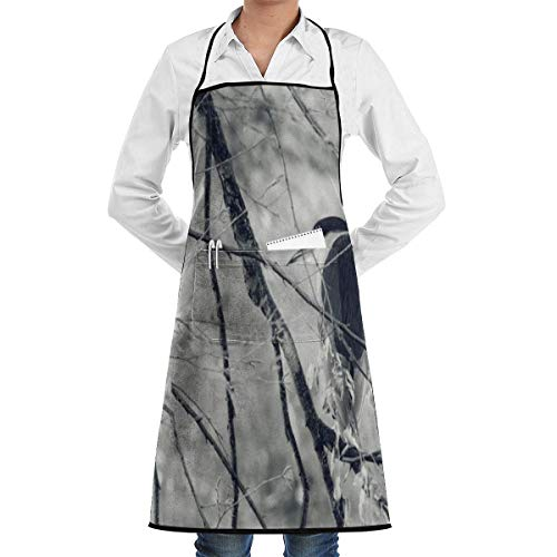 Rghkjlp Bird Tree Twigs Adjustable Bib Apron with Pockets - Commercial Restaurant and Home Kitchen Apron - Neck Strap- Extra Long Ties - Strong Black -