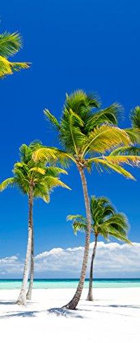 Tür-tapete Tür-poster selbstklebend – Palmen am Strand Urlaub Südsee Karibik – 90x205cm - Foto-tapete Tür-folie – T00014-1-teilig