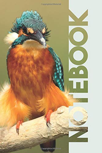 Notebook: Martin Pescador Stylish Composition Book for Kingfisher Bird Twitcher Fans por Molly Elodie Rose