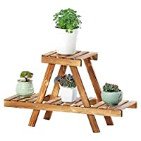 ASDFNF Flower Stand Bedroom Balcony Plant Stand 2 Layers Solid Wood Bonsai Display Rack Garden Storage Rack