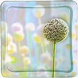 Luminarc 9208829 Eternel - Juego de 6 platos hondos (21 x 21 x 3,2 cristal), diseño de flor