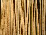 30 Bambusstangen 150 cm x 3/5 cm