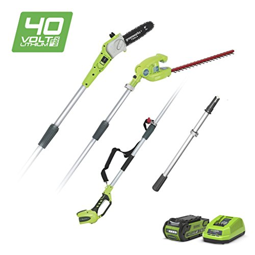 Greenworks Tools 1300607UA Cordless 2-in-1 Pole Saw/Hedger with 2 Ah Battery and Universal Charger, 40 V, Green Test