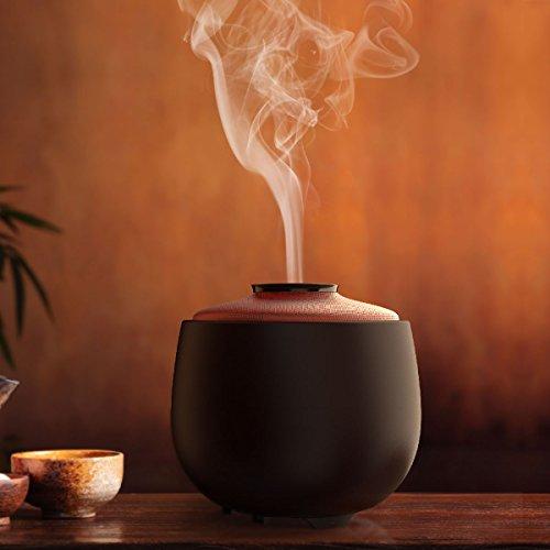 Excelvan 240ml Difusor de Aromas, Humidificador Aromaterapia,