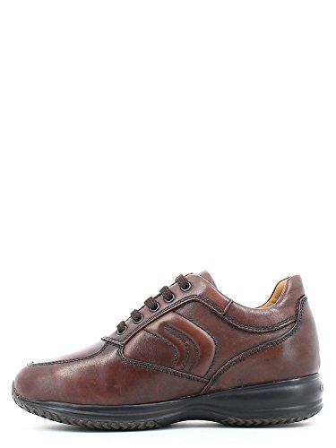 Scarpe uomo, colore Borgogna , marca GEOX, modello Scarpe Uomo GEOX U HAPPY ART. H Borgogna Marrone