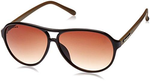 Fastrack Aviator Sunglasses (Brown) (P241BR2) image