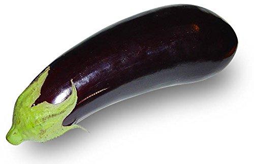 100 graines - AUBERGINE Violette de Barbentane - Solanum Melongena