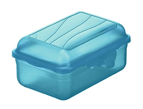 Rotho Funbox Vesperdose 0.4 l, Kunststoff (BPA-frei), blau, 0.4 Liter (12,5 x 9 x 5,8 cm)