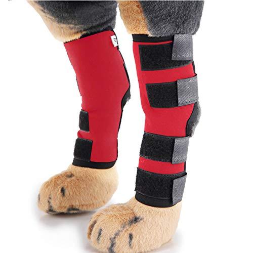 Alfie Pet by Petoga Couture Shane Hundeträger für Hinterbeine, Größe S, Rot - Pullover Knöchel-unterstützung
