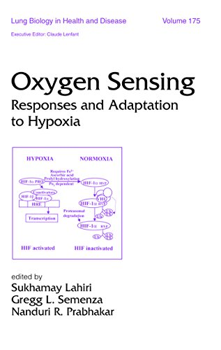 Oxygen Sensing: Responses And Adaption To Hypoxia (lung Biology In Health And Disease Book 175) por Sukhamay Lahiri