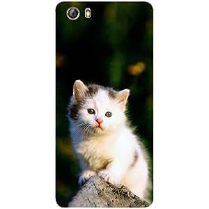 Casotec Sweet Cat Design 3D Printed Hard Back Case Cover for Gionee Marathon M5 lite