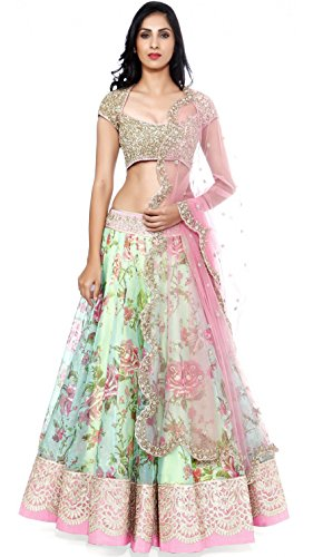 Clickedia Women\'s Net Lehenga (Fogg White Pink Lehenga_Free Size_White Pink)