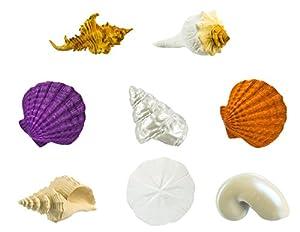 """Toob """"Safari Bulk Bolsa Conchas miniaturas (Multicolor)"""
