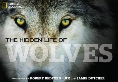 [ The Hidden Life of Wolves By Dutcher, Jamie , Hardback, Mar- 01- 2013 ]