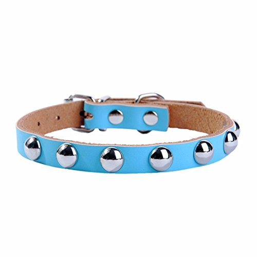 collier-chien-reglable-en-cuir-pu-col-rivet-mushroom-cloute-pet-puppy-dog-collier-xs-15cm30cm-bleu