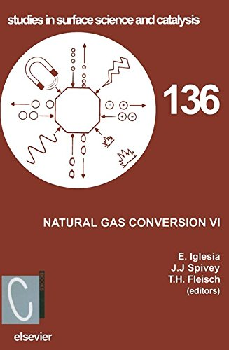 Natural Gas Conversion VI: Proceedings of the 6th Natural Gas Conversion Symposium, June 17-22, 2001, Alaska, USA (Studies in Surface Science and Catalysis Book 136) (English Edition) (Natural Gas Conversion)