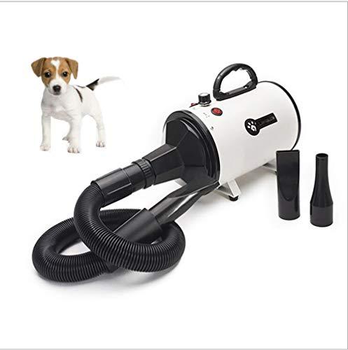 ZHONGYI666 Pet Dryer,Pet Asciugacapelli Soffiatore per Cani con 3 Ugelli, Ad Alta Potenza2 Livelli di Temperature, velocità di Vento Regolabile, Meno Rumore, Asciugacapelli per Cani per Uso