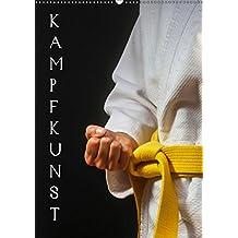 Kampfkunst (Wandkalender 2019 DIN A2 hoch): Fotografien vom Kampfkunst-Training (Monatskalender, 14 Seiten) (CALVENDO Sport)