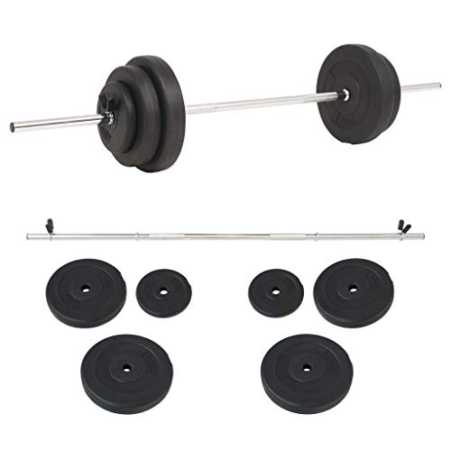Festnight Set de Pesas Barras musculacion Pesas 30 kg