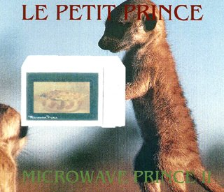 Microwave prince II