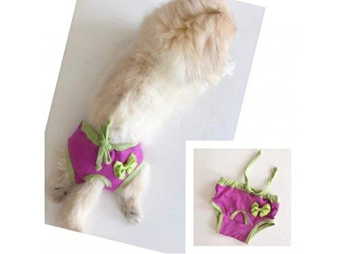 Preisvergleich Produktbild kemique 's Secret violett grün Schleife Unterwäsche Baumwolle Sanitär physiologischen Unterwäsche Panty Menstruationstasse Windel Hose waschbar