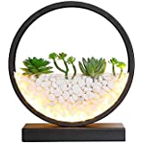 XFZ / Moderno, nórdico, minimalista, lámpara de escritorio LED estimulada, plantas y