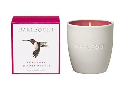 Glas Harlequin amazilia-Kolibris???Tuberose & Rose Petals Kerze -