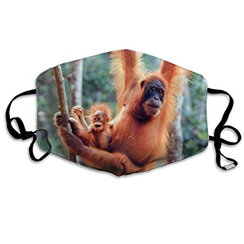 Masken, Masken für Erwachsene, Orangutan and Baby Waving Monkey Anti-Dust Cotton Mask,Unisex Face Mouth Mask for Kids Teens Men Women -