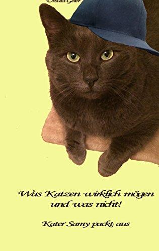 Was Katzen wirklich mögen und was nicht: Kater Samy packt aus