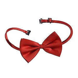 WIDMANN Pajarita Lusso?ajustable Unisex-Adult, rojo, talla única, vd-wdm2885r