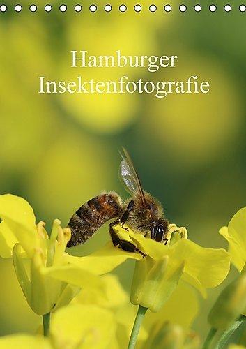 hamburger-insektenfotografie-tischkalender-2017-din-a5-hoch-insekten-faszinierende-bunte-wunderwelt-
